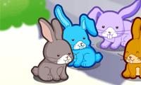 Весёлые кролики на лужайках