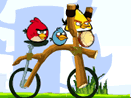 angry-birds-bike-cross